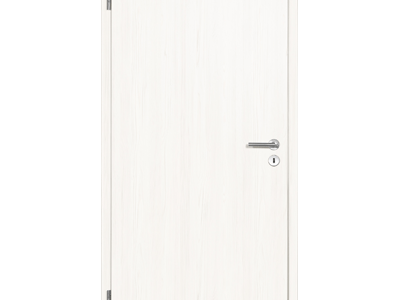 drzwi do domu 65